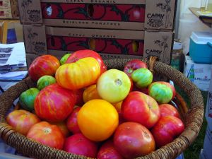 1280px-Capay_heirloom_tomatoes_at_Slow_Food_Nation